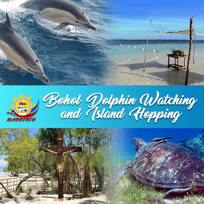 bohol island hopping tour bohol tours transport badotsco