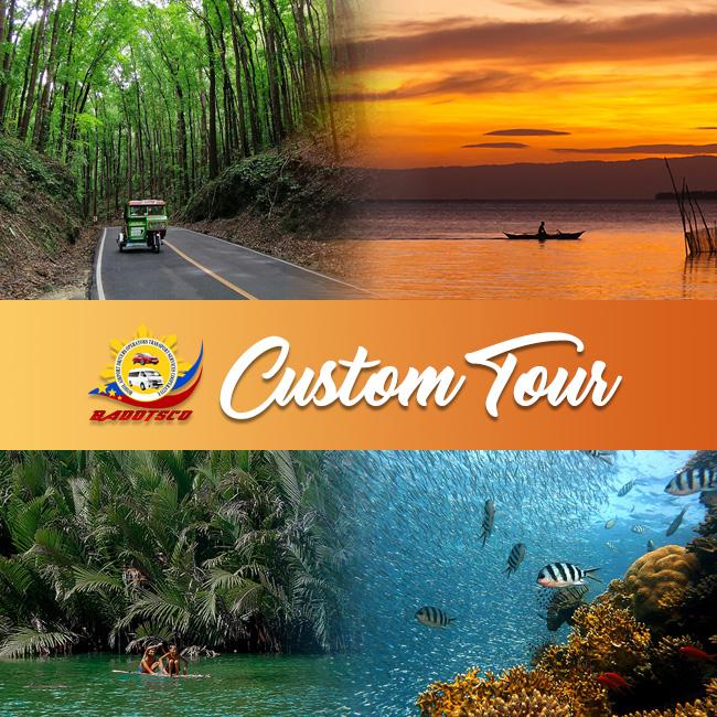 bohol tours transport custom tour